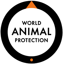 Global Internal Communications Manager, World Animal Protection