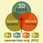 Could you write a novel in 30 days?