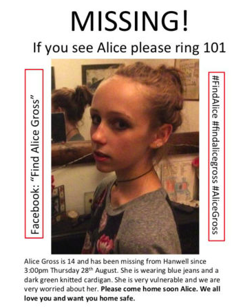 Alice Gross poster