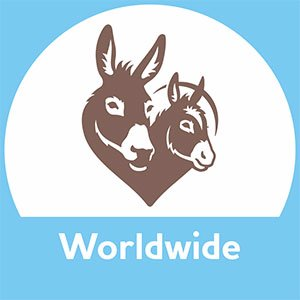 Supporter Communications Coordinator, The Donkey Sanctuary