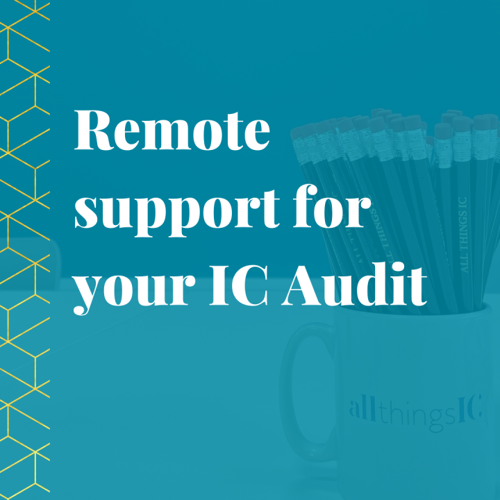 Remote support for IC audit